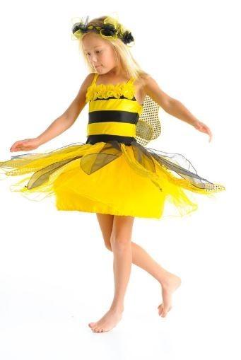 Fairy Girls Queen Bee Fairy Dress Small (2-4)