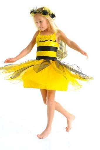 Fairy Girls Queen Bee Fairy Dress Med (Ages 4-6)