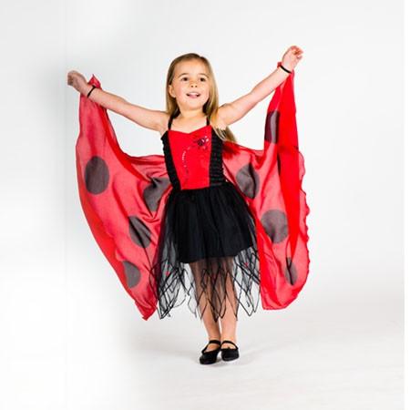Ladybird Fairy Dress