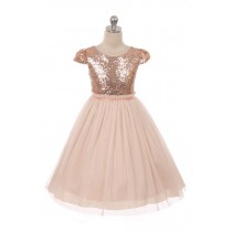 Casey Dress - Blush