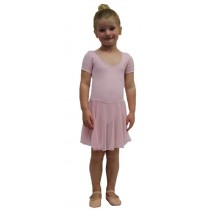 Chloe Leotard Dress - Pink