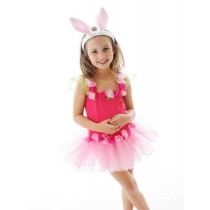 Forget me not Tutu Dress - Pink - Small (2-4)