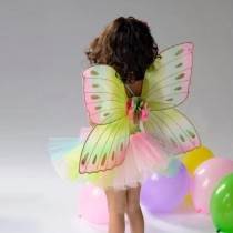 Jumbo Forrest Fairy Wings